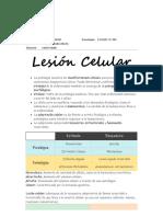 Pato 1.pdf