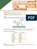 Las-Proteínas tematica y actividad