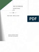 PeterWollen-RaidingTheIcebox