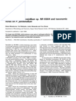 Pencillium Morphology