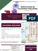 Morfología leucemias mieloides-ValentinaDiaz