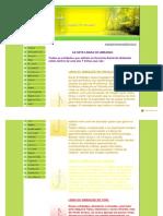 Www.paijoaquimdearuanda.com.Br-As 7 Linhas 5