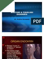Anatomi Fisiologi Endokrin
