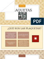 354041617-PLAQUETAS-DIAPOS.pptx