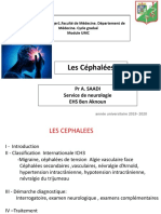4 - cephalées.pdf