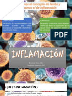 2. Inflamación Aguda y Crónica.pdf