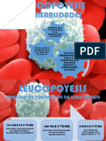 LEUCOPOYESIS.pdf