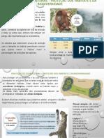 Proteção de Ecossistemas - Proteção dos habitats e da biodiversidade