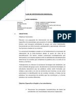 PLAN DE INTERVENCIÓN INDIVIDUAL_Solange Andrade urrutia