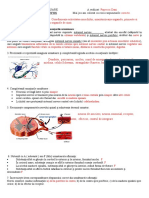 23. sistemul nervos Popescu Dani 108