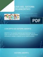 ANALÍSIS DEL SISTEMA ORGANIZATIVO.pptx