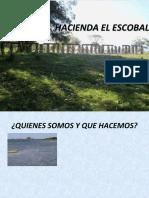 INDUCCION EN SEGURIDAD Y SALUD EN EL TRABAJO HACIENDA EL ESCOBAL