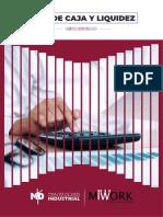 Manual de Flujo de Caja u Liquidez