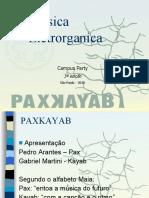 projetopaxkayab-100126094511-phpapp01