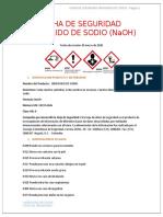 HOJA DE SEGURIDAD PILAR.docx