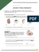 4 Embryo Development Gizmo