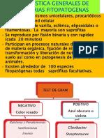 BACTERIAS FITOPATOGENAS 2020.pdf