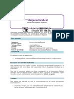 guia de trabajo individual (3)