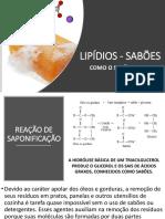 aulasabao.pdf