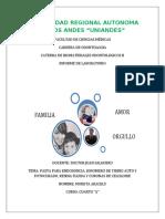 INFORME-CORONAS-DE-ACETATO-O-CELULOIDE.docx