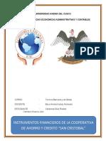 instrumentos finacieros.docx