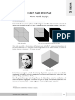 8_cubos_ilusionar.pdf