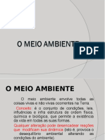 AULA - O MEIO AMBIENTE