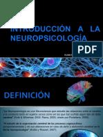 Introduccion Neuropsicologia