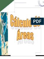 AULA 11 Calculo de areas.pdf