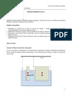 2. Guía presión Hidrostática