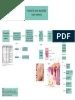Fisiopatología - Cáncer de piel