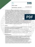 DIS Plan IS17 - Montaje 1 (Szmukler) - Programa 2018-w