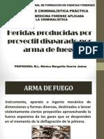paf_CRIMINALISTICA[2963].pdf
