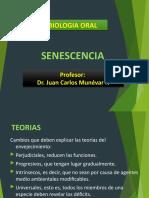 Senescencia