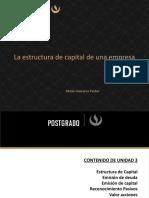 Estructura de Capital.pdf