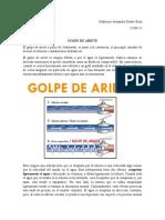RESUMEN V GOLPE DE ARIETE