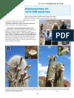 Cactus Explorers Journal 24.en.es