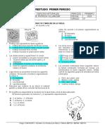 preestudio_5_p12020 (2)