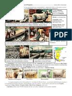 Cría de ovejas y otras actividades  en la Patagonia