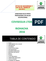CONCEPTOS BASICOS SYSO EQUIDAD.ppt