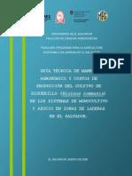 GUIA TECNICA DE MANEJO AGRONOMICO Y COSTOS DE PRODUCCION DEL CULTIVO DE HIGUERILLO