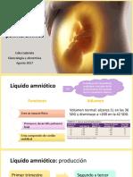 oligohidramnisoypolihidramnios-170818060750