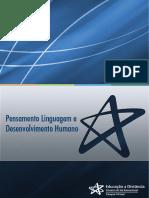 pensamento6.pdf