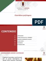 CLOSTRIDIUM PERFRINGENS (1).pptx