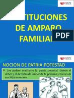 INSTITUCIONES DE AMPARO FAMILIAR
