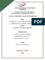 ACTIVIDAD 12 - PROGRAMAS DE AUDITORIA AMBIENTAL