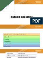 CLASE 10 DE SEPTIEMBRE ANATOMIA - copia - copia.pdf
