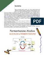 200324 Le Bevande Alcoliche.doc