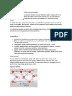 Exposicion Protocolo OSPF