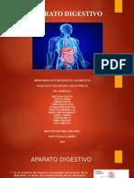 El Aparato digestivo (mejorado)